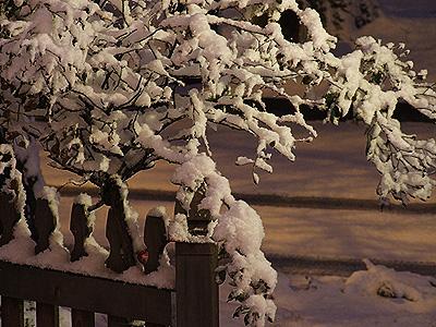 Snowy10