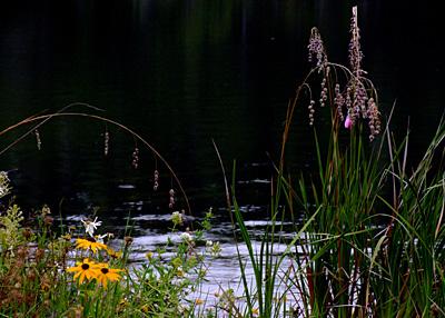 Lake63