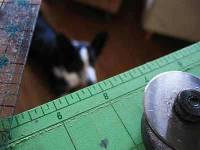 Cutter-ruler-corgi