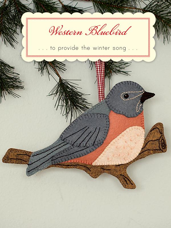 WesternBluebird1