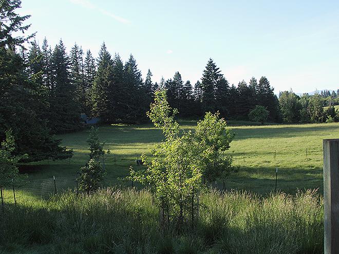Farm34
