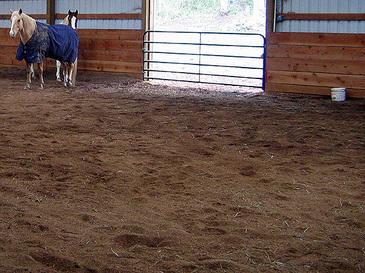 Horsefarm3