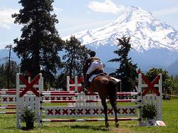 Horseshow2