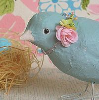 Pho_bird_bridie_med